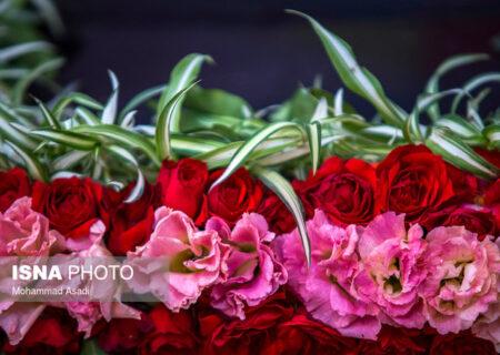 بررسی روشهای تجاریسازی تحقیقات حوزه گل و گیاهان زینتی در وبینار تخصصی