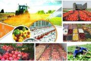 جایگاه ویژه محصولات کشاورزی در مبادلات تجاری با اوراسیا