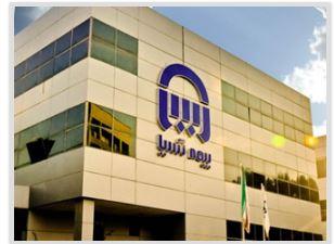 رئیس شعب بیمه آسیا در استان خوزستان، رئیس هیات رییسه شورای هماهنگی این استان شد