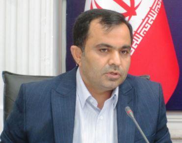 تحلیل صورت های مالی بانک ملی ایران به شکل تجاری، ممکن نیست