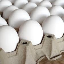 عوارض ۳۵۰۰ تومانی برای صادرات هر کیلو تخم مرغ