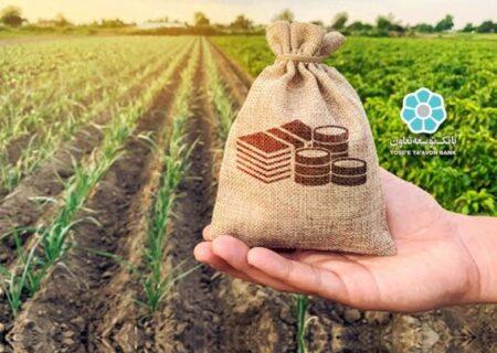 بانک توسعه تعاون ۲۴ هزار و ۵۰۰ میلیارد ریال تسهیلات اشتغال پایدار روستایی پرداخت کرد